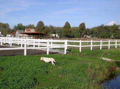 Ogrodzenia Farmerskie